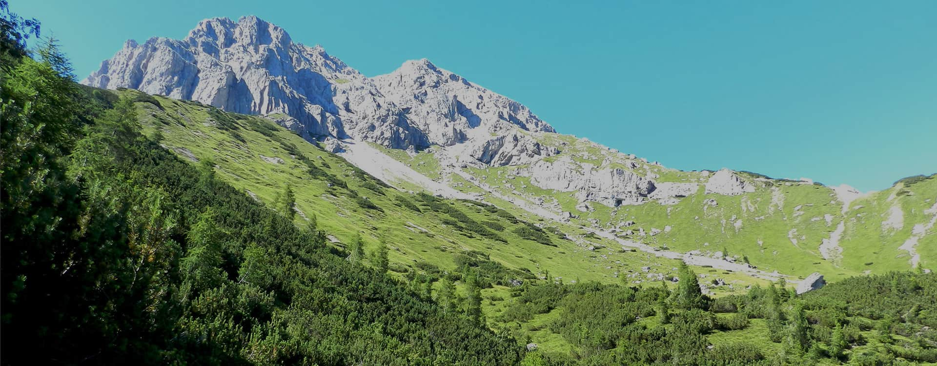 Prealpi Cansiglio Hiking Estate