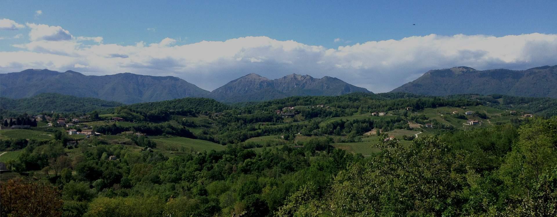 Prealpi Cansiglio Hiking Primavera