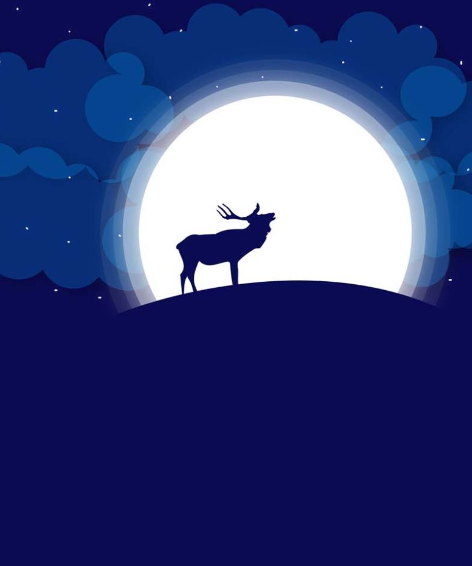 i-cervi-sotto-la-luna-valmorel