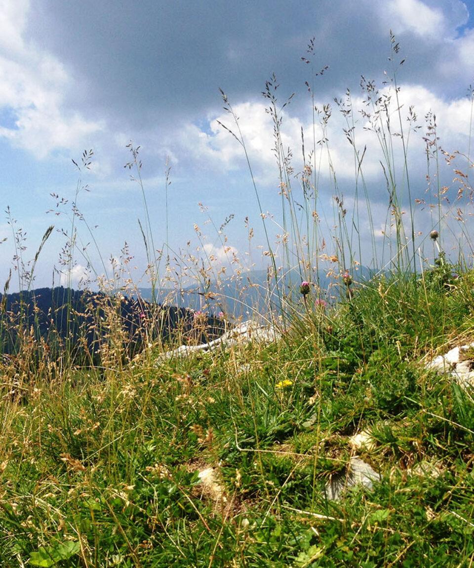 montagna-montereale